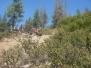 2008-08 Sierra Trek