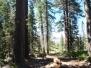 2010-07-18 Rubicon Trail