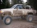 fordyce065