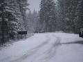 snowpatrol018