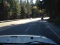 Off Road Posse 567.JPG