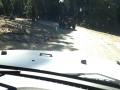 Off Road Posse 577.JPG
