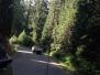 2015-06-27 Plummer Ridge Trail